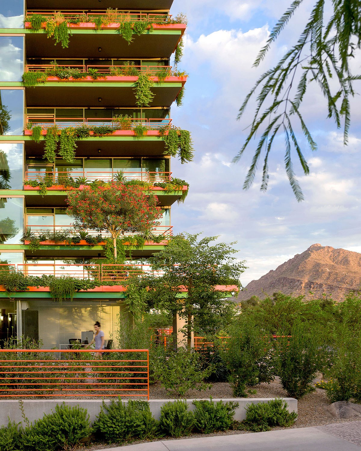 Lush vegetation and vines hanging from the patios of Scottsdale's premier luxury apartment community